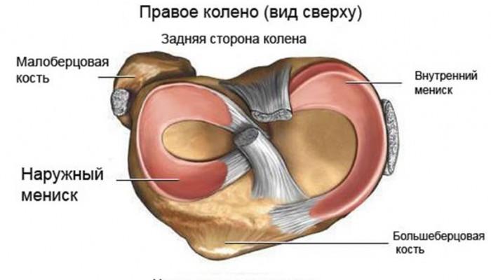 Болка в коляното след натоварване