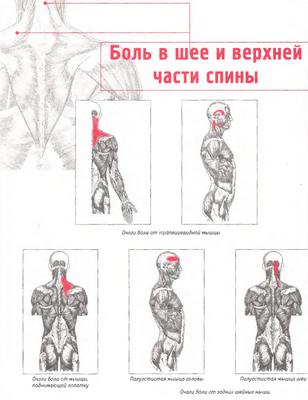 Болка в гърдите на врата и гърба - Болки в ставите