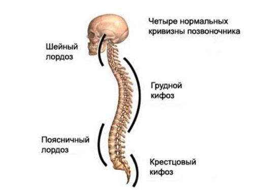Ревматизъм на гръбначния стълб