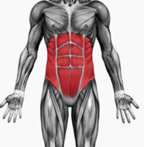 Силни мускули на гръбначния стълб - здраво гърло - Болки в..