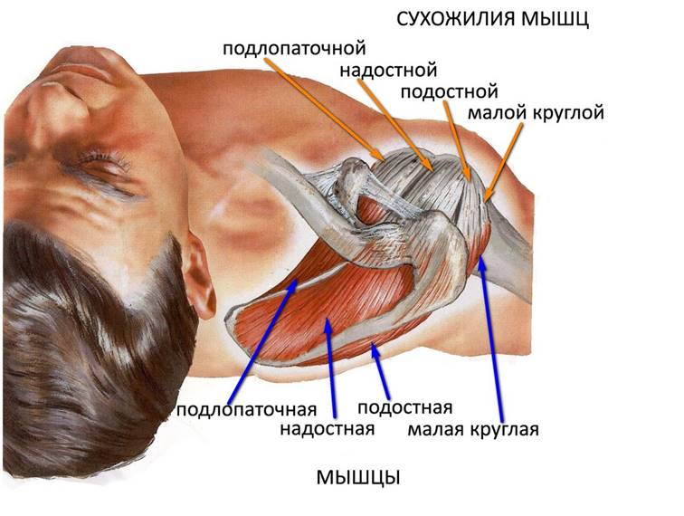 Болки в ставите на ръцете - причини и лечение